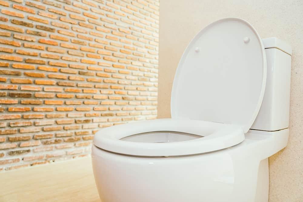 Riparazione WC Milano