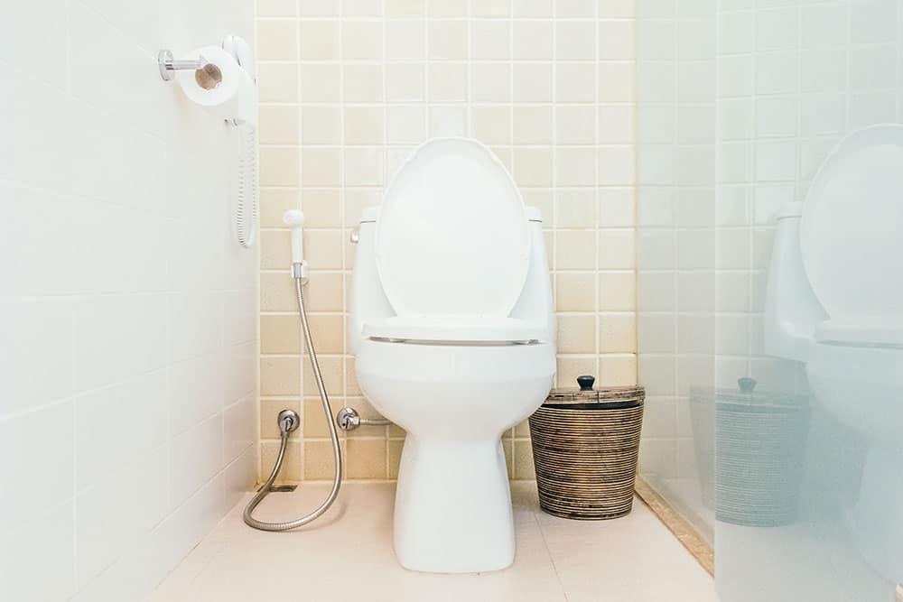 Sostituzione WC Milano